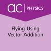 Sebit, LLC - Flying Using Vector Addition  artwork
