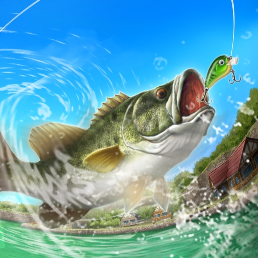 Z Fish Inc Bass 'n' Guide : Lure ...