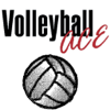 Volleyball Ace Stats - Dimensional Software