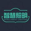 杭州瑞琦信息技术有限公司 - 智慧·照明  artwork