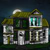 MR. WILLSON STEALTH HORROR HOUSE