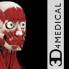 Muscle System Pro III - iPhone-3D4Medical.com, LLC