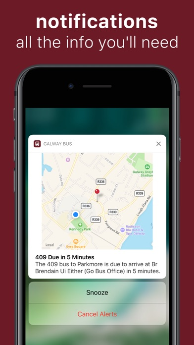 Screenshot of Galway Bus Abú3