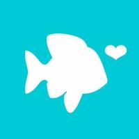 POF - Best Dating App for Conversations