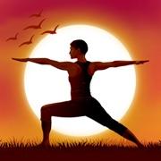 Relax Yoga Musique P: sons de nature et relaxation