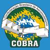 COBRA - Confederação Brasileira de Aeromodelismo Wiki