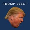 Jamie Hardie - Trump Elect artwork