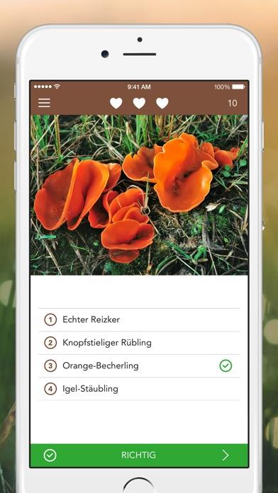 Pilzführer PRO - Pilze sicher bestimmen Screenshots