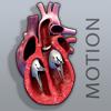 usamau04 melambe - Open Heart Motion artwork