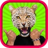 Animal Head Photo Sticker Booth Free - Funny Animals Face Changer Montage Maker