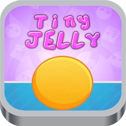 Tiny Jelly Puzzle Game iOS App