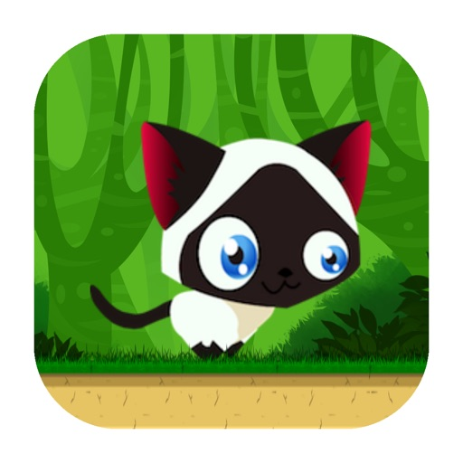 Game of Cat iOS App