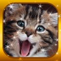 Cute Baby Cat & Kitty Collector Jigsaw-Puzzles for Kids and Toddlers 2 icon