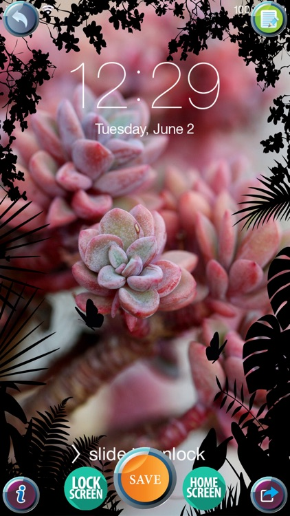 Best 4k Wallpapers For Iphone Ultra Hd Background S And Lock