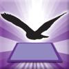 3D LEARNING CARD BIRDS