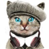 Cat Translator,talk to cats game with meow sound