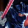 Ninja Fighter Legends. The Shadow Street Fight