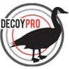 DecoyPro Goose Hunting Diagrams