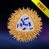 Scienza - Microcosmo 3D Free: batteri, virus, atomi, molecole e particelle