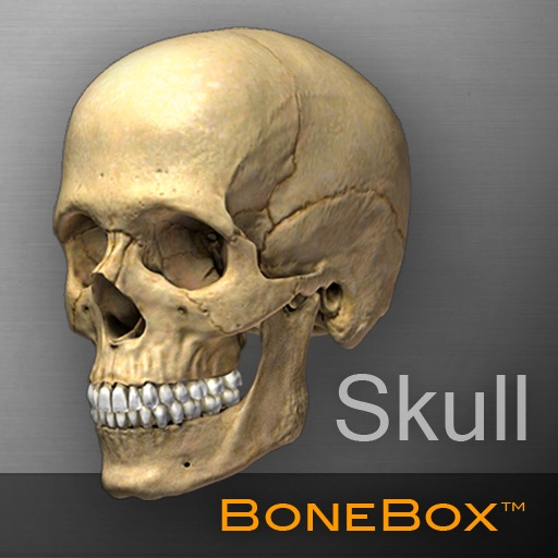 骨架盒:BoneBox™ – Skull Viewer