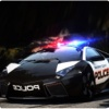Police Car Driving 2016