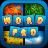 WordAppPro - 4 Pics, ...