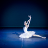 Classical Ballet Glossary and Cheatsheet: Study Guide and Courses