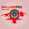 Duck Hunting Calls-Duck Sounds Duck Calling