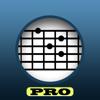 E-Chord (Diccionario de acordes guitarra)