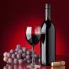 Guía de Vinos: Cata de vinos para principiantes