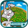 labirintos de animais puzzle a crianças de 3 a 9 anos de idade - Premium