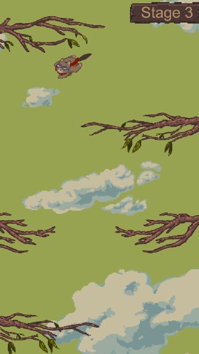 Acorn Aviator Screenshot