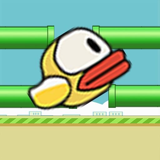 Wingless Birdies Rolly Bird iOS App