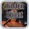 Hidden Object Fairy Tail