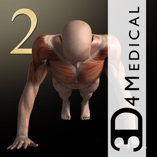 我的肌肉2高清版:iMuscle 2