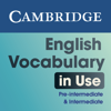 English Vocabulary in Use Pre-intermediate and Intermediate Activities