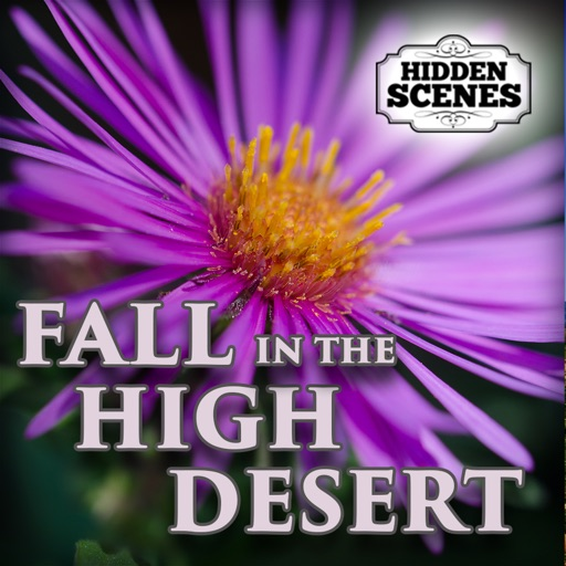 Hidden Scenes - Fall in the High Desert iOS App