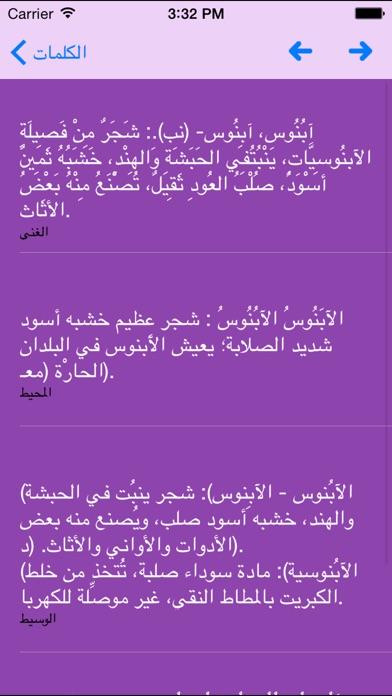 Arabic Lexicon معجم اللغة العربيةلقطة شاشة1