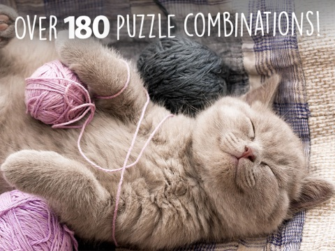 Jigsaw Wonder Kittens Puzzles for Kids Screenshots