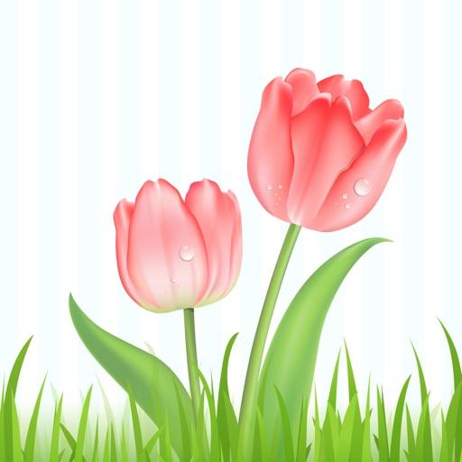 Bloemen en Planten iOS App