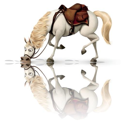 Flip Mirror - Best photo reflection app iOS App