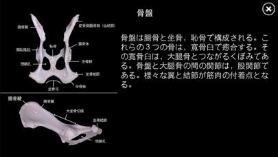 イヌの解剖学 - Dog Anatomy 3d screenshot1