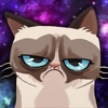 Grumpy Cat - Funny Memes,  Videos,  Games and More for Kids!