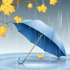 Rain Sounds-Natural raining sounds, thunderstorms, & rainy ambiance to help relax, aid sleep & focus