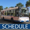 Bermuda Bus Schedule