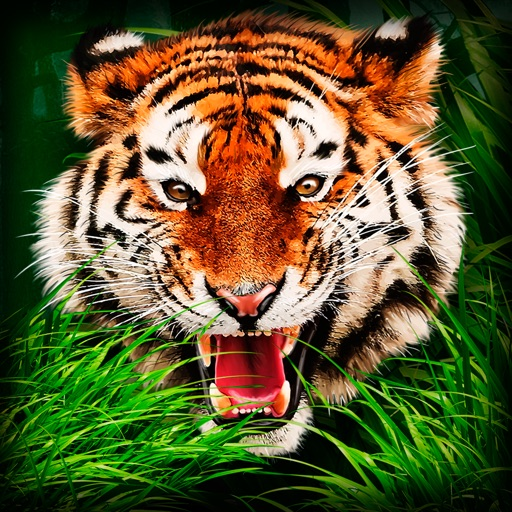 Safari Wildlife: Tiger Simulator 3D Full iOS App