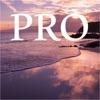 Beach Sound Central Pro