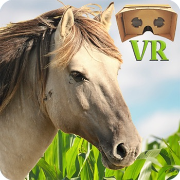 VR Horse Ride for iPhone