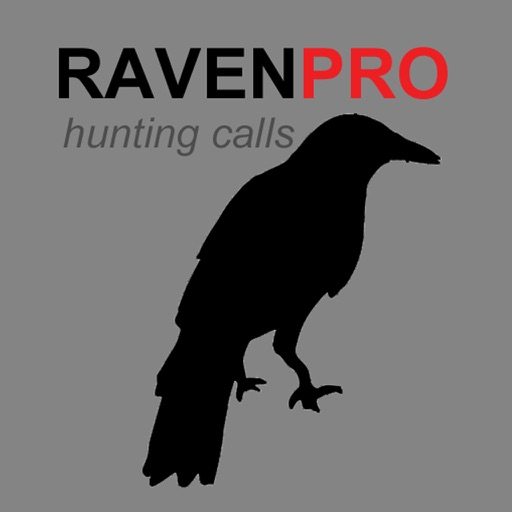 REAL Raven Hunting Calls -- 7 REAL Raven CALLS & Raven Sounds! - Raven e-Caller - Ad Free - BLUETOOTH COMPATIBLE iOS App