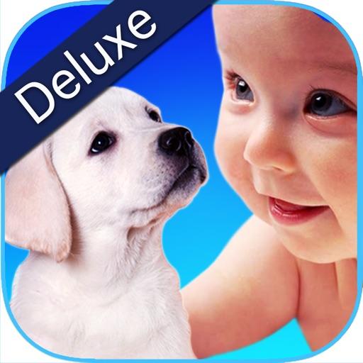 护理我 ******** 这个环节您的孩子可以照顾可爱的动物宝宝,他们可以